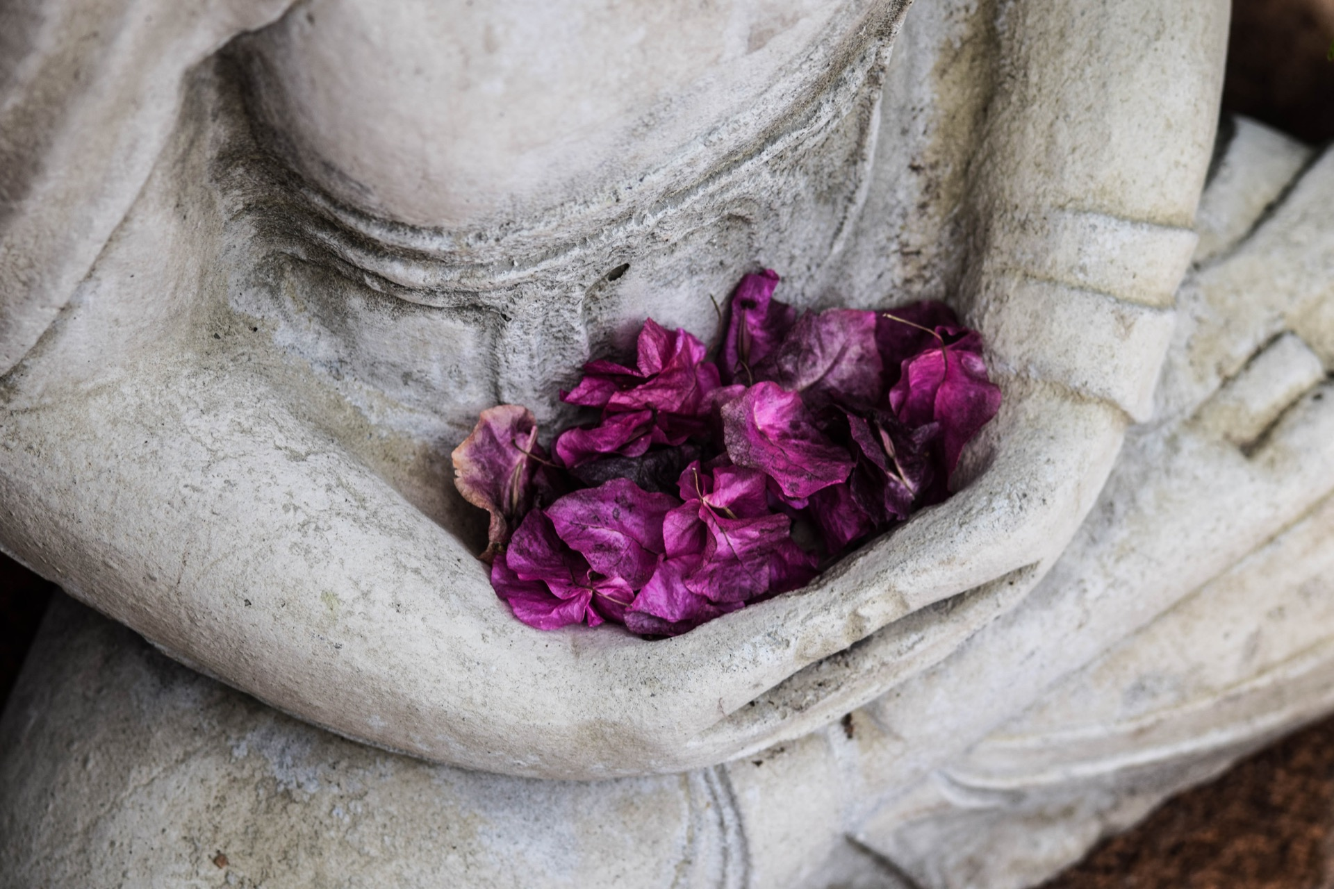fondo-budismo-inself